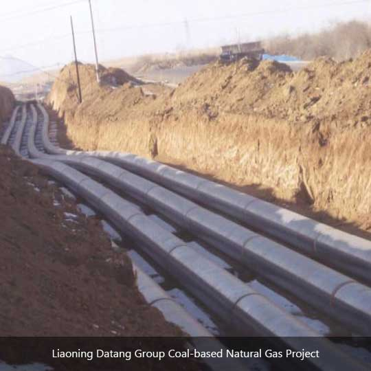 Liaoning Datang Group Coal-based Natural Gas Project